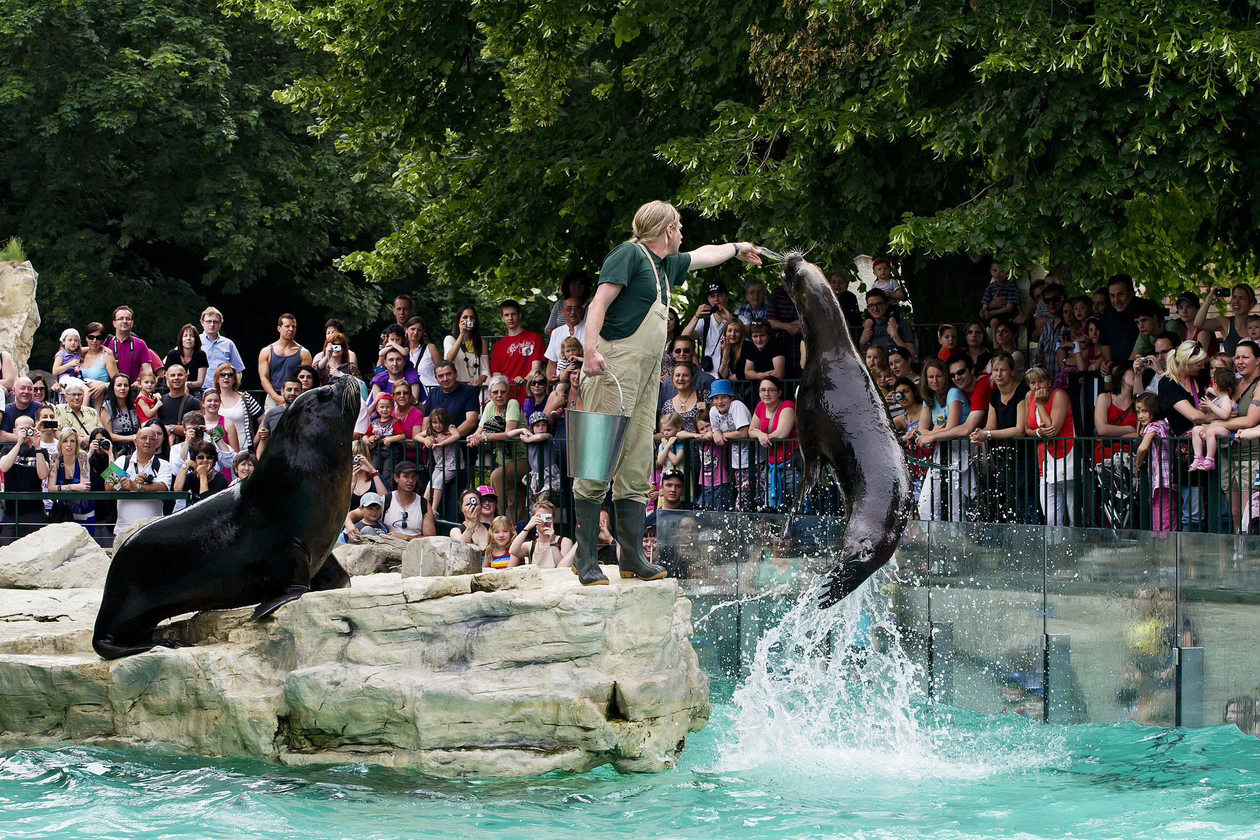 Image result for Schonbrunn Zoo