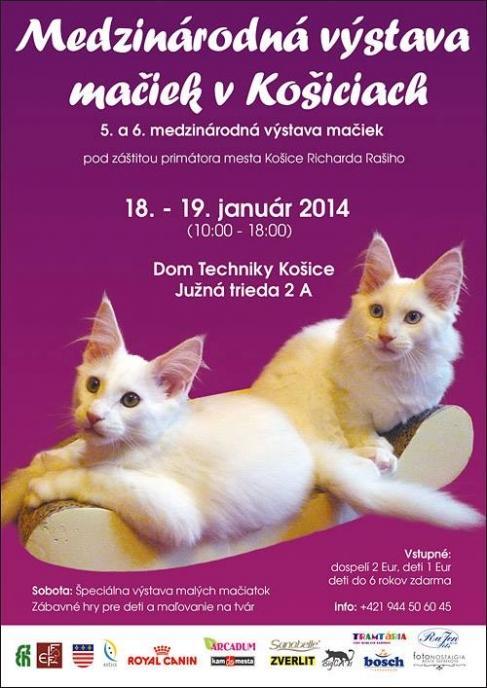 Medzinárodná výstava mačiek v Košiciach  7527e9829d9